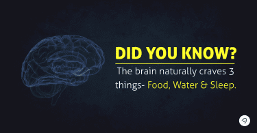 Fact related to brain. Best Foods for brain health
